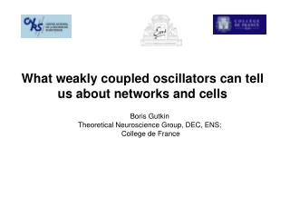 What weakly coupled oscillators can tell  us about networks and cells