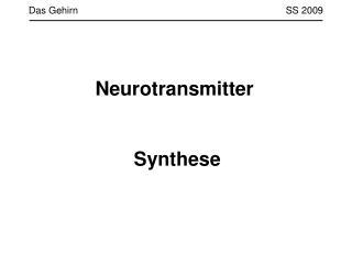 Das Gehirn                 SS 2009