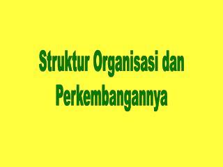 Struktur Organisasi dan Perkembangannya