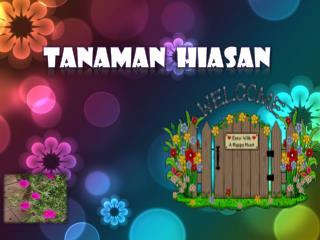 Tanaman   HIASAN