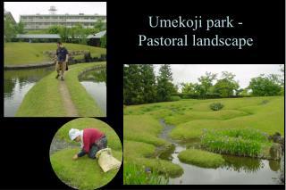 Umekoji park - Pastoral landscape