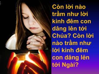Lạy Chúa, Ngôi tình yêu, con mến tin cậy nhiều, xin rộng ban cho con một đời tươi mới, Chúa ơi!