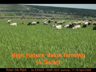 High Nature Value farming in Galaţi