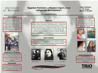 Egyptian Feminism: a Western import, or an indigenous development?