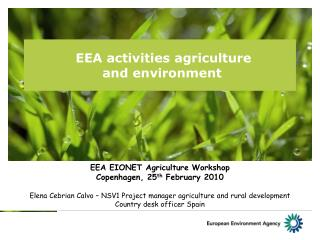 EEA activities agriculture  and environment