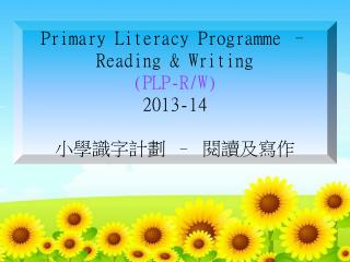 Primary Literacy Programme – Reading & Writing (PLP-R/W) 2013-14 小學識字計劃  –  閱讀及寫作