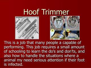 Hoof Trimmer