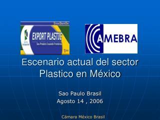 E scenario actual del sector  Plastico en México