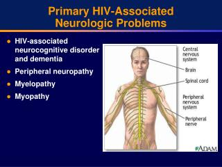 Primary HIV-Associated Neurologic Problems