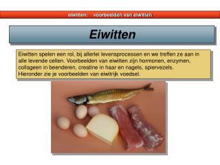 eiwitten:    voorbeelden van eiwitten