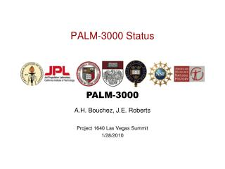 PALM-3000 Status