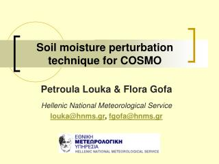 Soil moisture perturbation technique for COSMO
