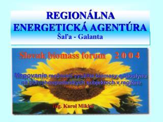 REGIONÁLNA ENERGETICKÁ AGENTÚRA