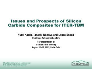 Issues and Prospects of Silicon Carbide Composites for ITER-TBM