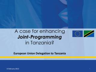 A case for enhancing  Joint-Programming in Tanzania?
