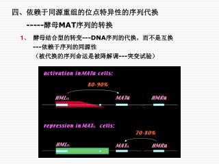 四、 依赖于同源重组的位点特异性的序列代换 ----- 酵母 MAT 序列的转换