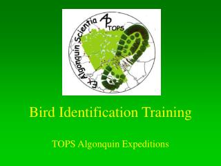 Bird Identification Training