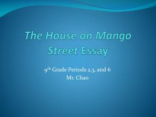 The House on  Mango Street  Essay