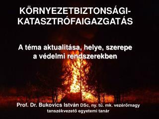 Prof. Dr. Bukovics István  DSc, ny. tű. mk. vezérőrnagy tanszékvezető egyetemi tanár