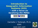 Introduction to  Geographic Information Systems GIS - with a focus on  localizing the MDGs