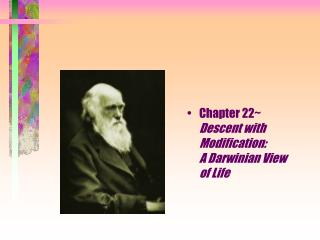 Chapter 22~        Descent with Modification:                    A Darwinian View         of Life
