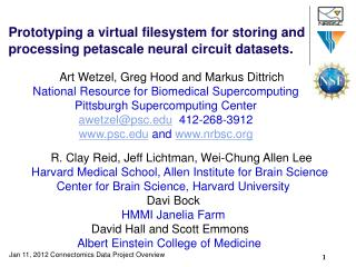 Prototyping a virtual filesystem for storing and processing petascale neural circuit datasets .