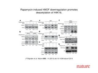 J Füllgrabe  et al. Nature  000 , 1-4 (2013)  doi:10.1038/nature12313