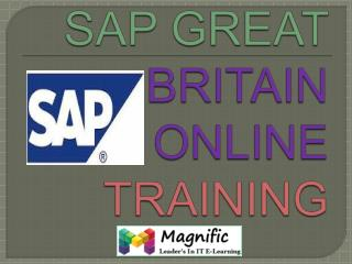 sap great britain payroll online training in india