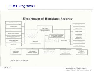 FEMA Programs I