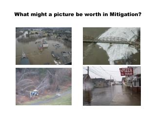What might a picture be worth in Mitigation?