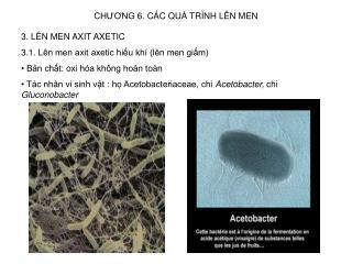 CH??NG 6. C�C QU� TR�NH L�N MEN