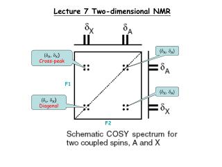 Lecture 7 Two-dimensional NMR