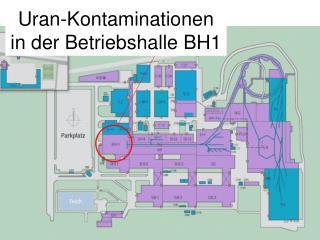 Uran-Kontaminationen in der Betriebshalle BH1