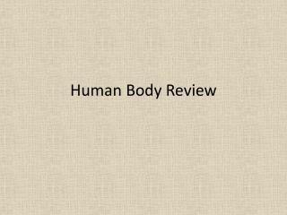 Human Body Review