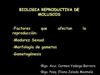 BIOLOGIA REPRODUCTIVA DE MOLUSCOS Factores que afectan la reproducción:  Madurez Sexual