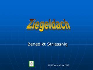 Benedikt Striessnig