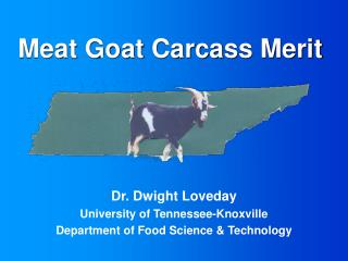 Meat Goat Carcass Merit