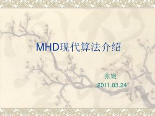 MHD 现代算法介绍