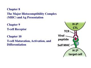 Chapter 8    The Major Histocomptibility Complex (MHC) and Ag Presentation Chapter 9
