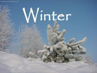 Snowman - Yetti
