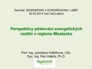 """Seminář """"BIOENERGIE V EUROREGIONU  LABE"""" 20.02.2014 Ústí nad Labem"""
