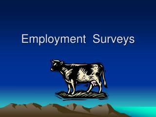 Employment  Surveys