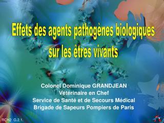 Colonel Dominique GRANDJEAN Vétérinaire en Chef Service de Santé et de Secours Médical