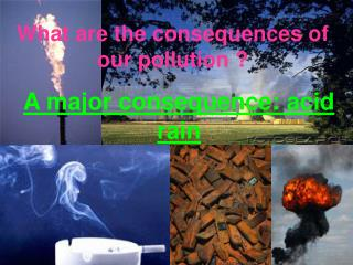 What are the consequences of our pollution ?