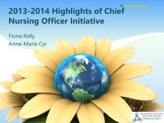 2013-2014 Highlights of Chief Nursing Officer Initiative