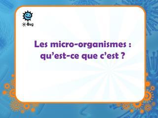 Les micro-organismes : qu'est-ce que c'est ?