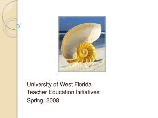 University of West Florida Teacher Education Initiatives Spring, 2008