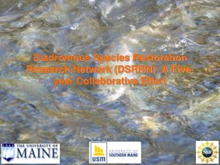 Diadromous Species Restoration Research Network DSRRN: A Five-year Collaborative Effort
