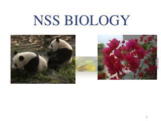 NSS BIOLOGY