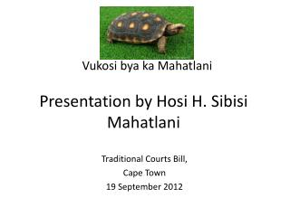 Presentation by Hosi H. Sibisi Mahatlani
